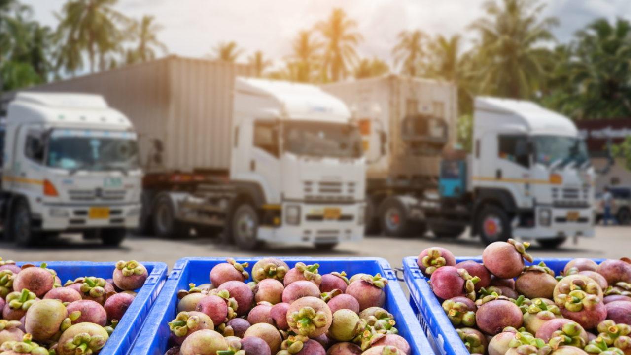 20201110132624_los-lideres-de-la-industria-alimentaria-alertan-sobre-el-peligro-existente-en-la-distribucion-de-los-alimentos-1280x720